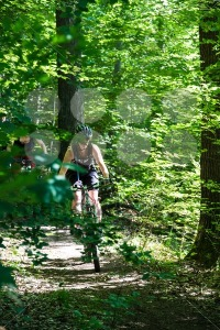 A-group-of-mountainbikers-in-the-forest