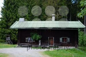 Alpine-Pasture1