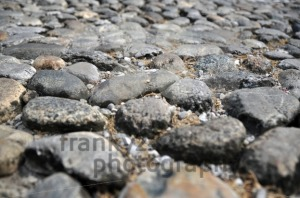 Ancient-Stone-Walkway1