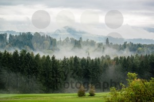 Autumn on the golf course - franky242 photography