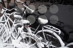 Bikes-In-The-Snow
