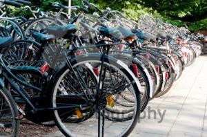 Bikes-in-Amsterdam