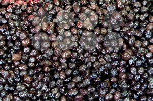 Black-Olives1