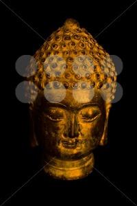 Buddha-portrait1