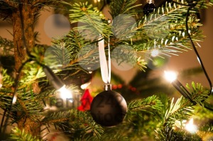 Christmas Ball Hanging From Christmas Tree - franky242 photography
