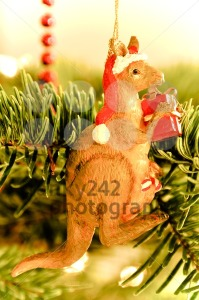 Christmas Tree Decoration: Australian Kangaroo - franky242 photography
