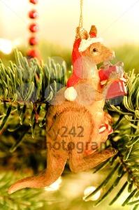 Christmas Tree Decoration: Australian Kangaroo - franky242 photography