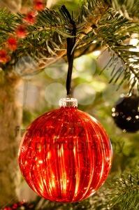 Christmas balls - franky242 photography