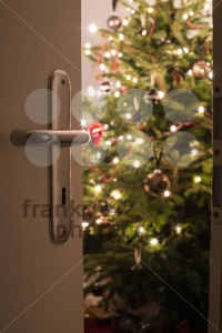 Christmas is close - franky242 photography