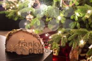 Christmas scenery - franky242 photography