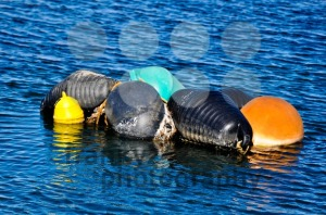Colourful-Buoys