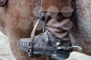 Cowboy-boot-with-spur-and-horse
