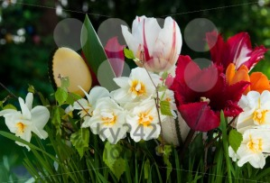 Easter-Flower-Bouquet