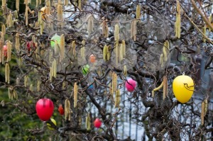 Easter tree - franky242 photography