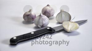 Elephant-Garlic-on-white