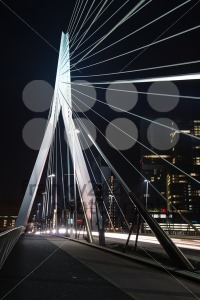 Erasmus Bridge in Rotterdam at night - franky242 photography