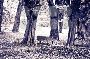 Fall-scenery-8211-old-bluish-make-over