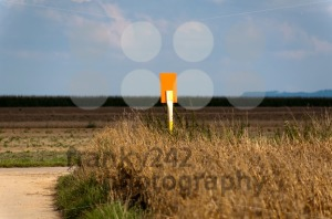Field-scenery-with-sign