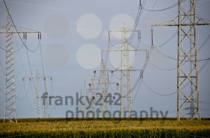 Fields-and-power-poles2