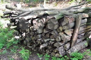 Firewood-stack-1