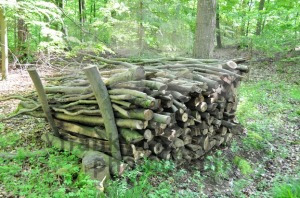 Firewood-stack-2