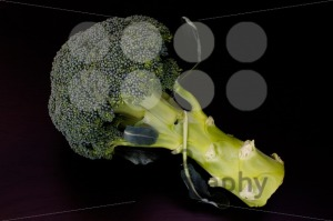 Fresh-raw-green-broccoli1
