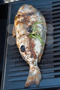 Gilthead Seabream on BBQ - franky242 photography