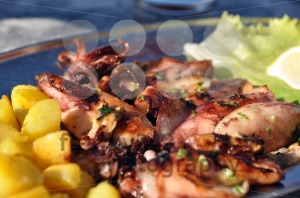 Grilled-squid-platter