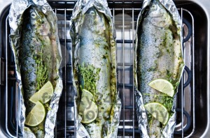 Grilled-trout-on-barbecue1