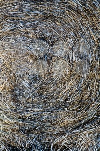 Hay Bale - franky242 photography