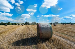 Hay bales on the field - franky242 photography