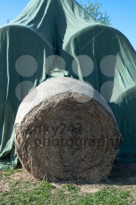 Hay balls in plastic cover wrap - franky242 photography