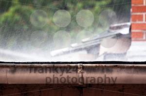Heavy rain - franky242 photography