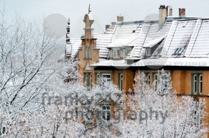 Houses-and-trees-in-fresh-snow