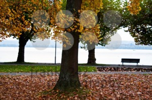 Lake-Constance-in-fall