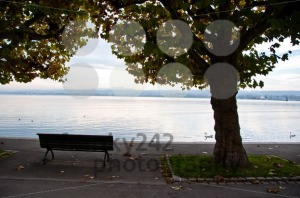 Lake-Constance-in-fall2