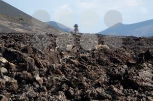 Lanzarote Soil - franky242 photography