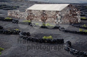 Lanzarote Winery - franky242 photography