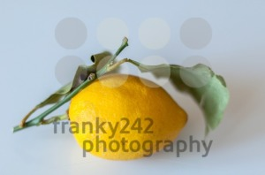 Lemon with leaves - franky242 photography