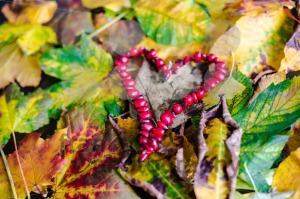 Love-Autumn