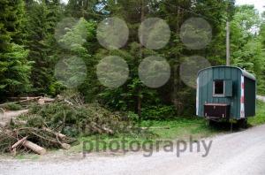 Lumber-Shed