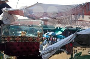 Marrakech-8211-Horsedrawn-Carriage
