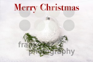 Merry Christmas - franky242 photography