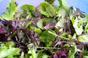 Mixed lettuce - franky242 photography