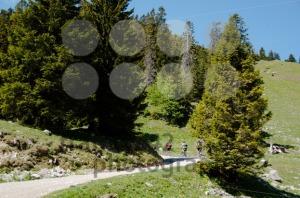 Mountain-Bike-Riders