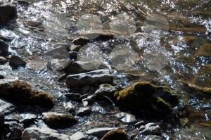 Mountain Stream - franky242 photography