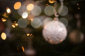 Myterious Christmas tree - franky242 photography