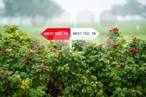 Next tee sign - franky242 photography