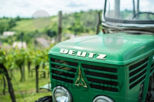 Old-Deutz-tractor-in-vineyard