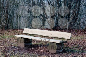 Park Bench - franky242 photography